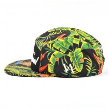 3d embroidery printing 5 panels caps