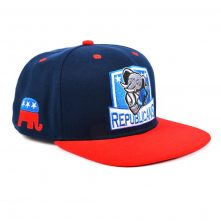 flat embroidery two color custom snapback hats
