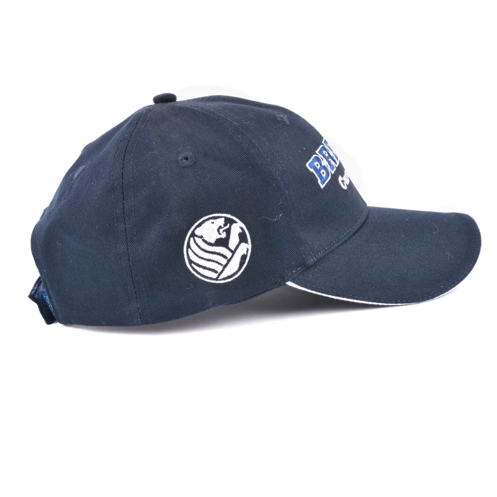 flat embroidery 6 panels baseball hats custom