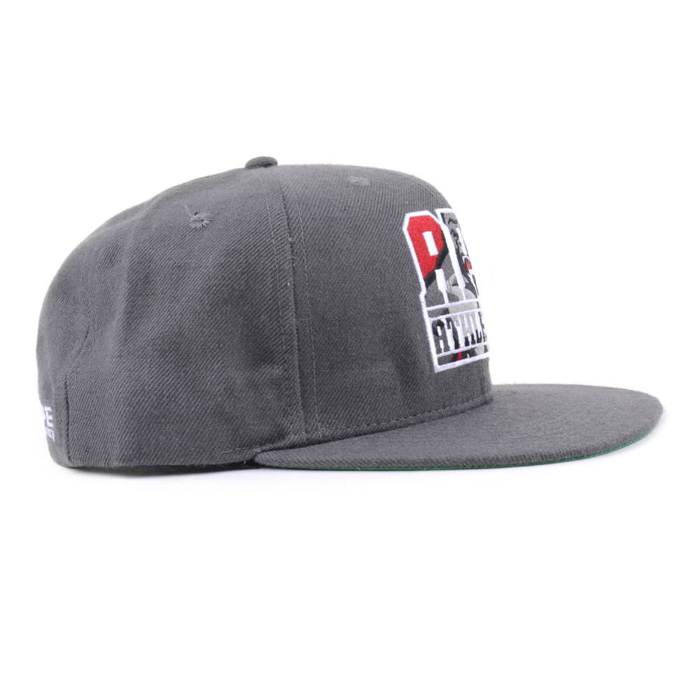 flat embroidery gray snapback caps
