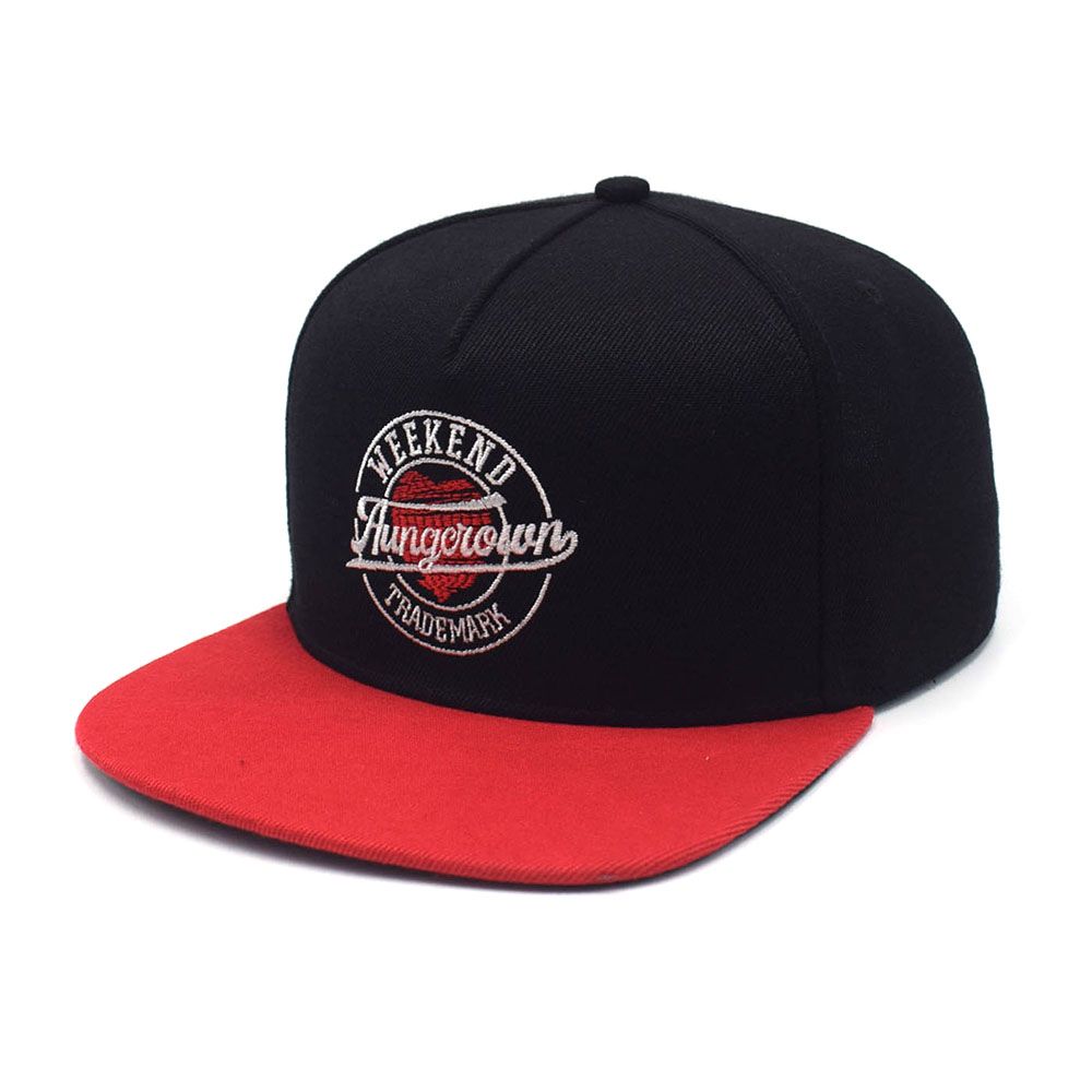5 panels flat embroidery two color snapback caps