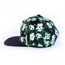 5 panels vfa embroidery logo printing children snapback hats